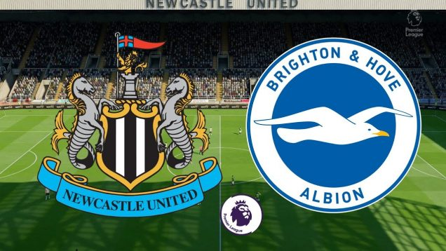 Newcastle Vs Brighton
